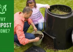 Why Compost at Home?